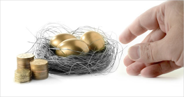 nest with gold eggs and gold coins
